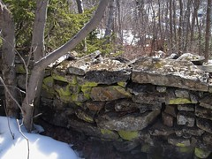 Bayers Lake Mystery Walls