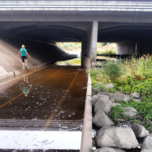 Surprised to see even this modest level of flooding this morning on the Guadalupe River Trail 7 derailleur Hwy 101