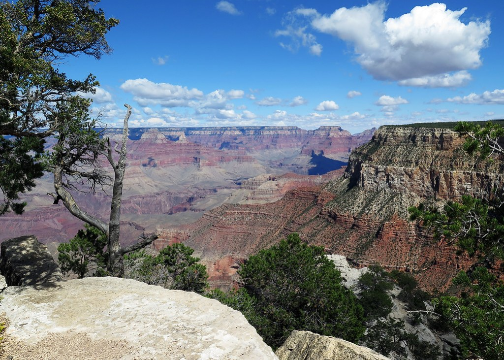 Grand Canyon from the Rim Trail