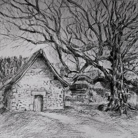 La chapelle du Mas Saint Jean, Creuse, the Tree