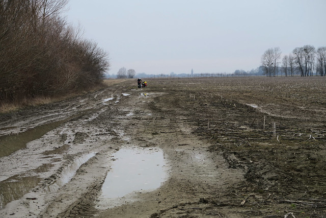 Pushing through Hungarian mud 2