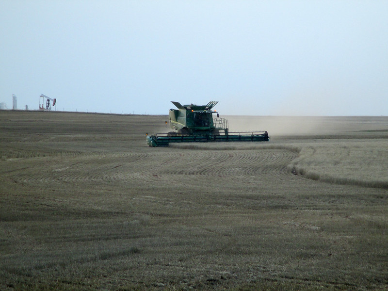A combine cuts back to get supper