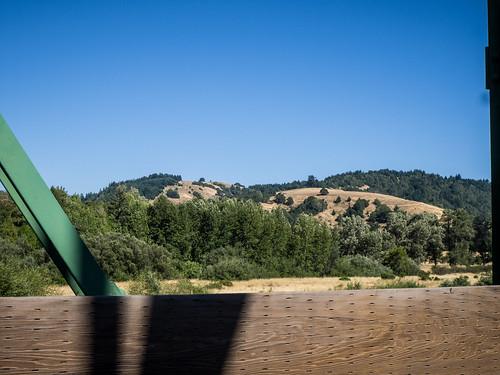 Coastal Redwoods and Fog-096