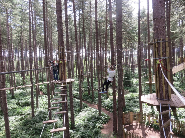 Go Ape Tree Top Adventure (A)