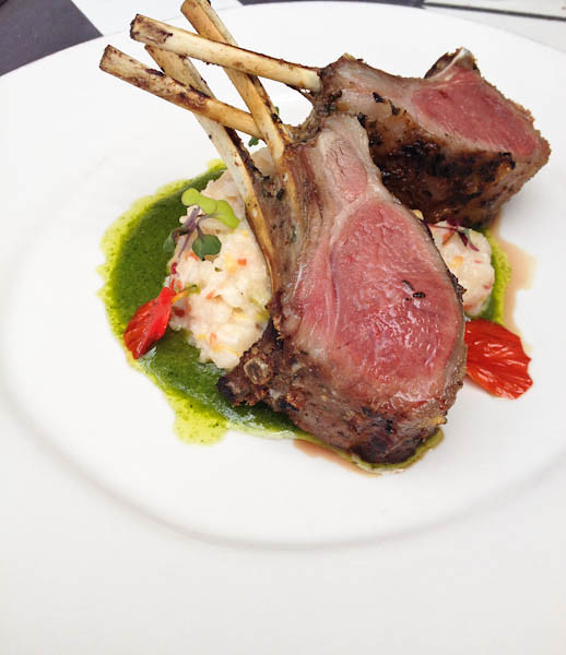 Lamb Chops w/ Blood Orange Risotto, Provenance