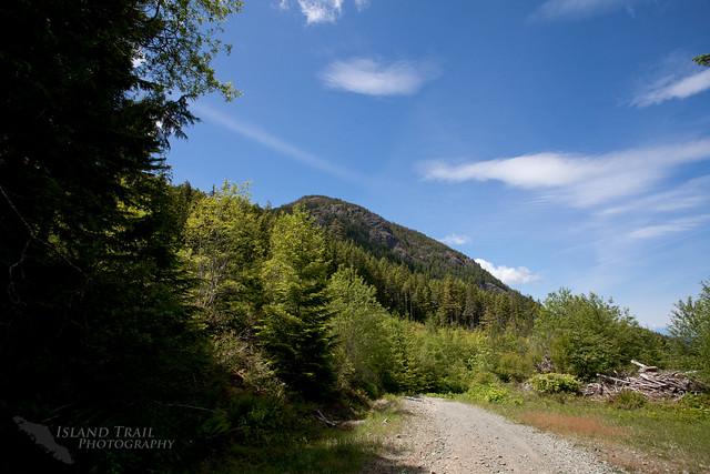 Mt Horne - 2014-06-07-6164
