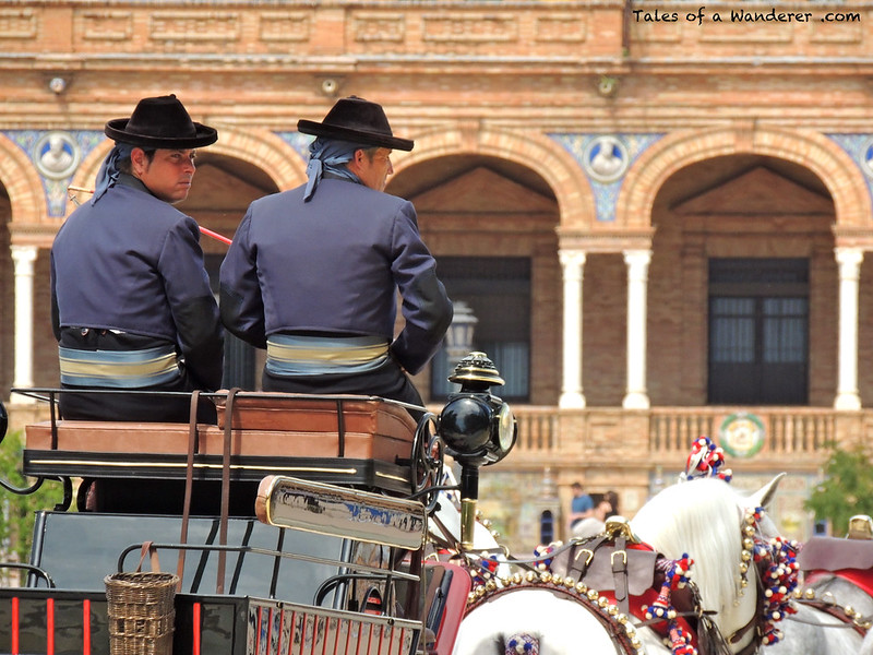 SEVILLA - Plaza de España - (XXIX Exhibición de Enganches 2014 - Desfile inaugural)