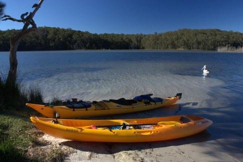 Image result for Kayak Burrill Lake