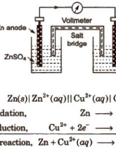 An electrochemical cell of zinc and copper metals is known as daniell it represented also cbse class chemistry notes electrochemistry aglasem schools rh schoolslasem