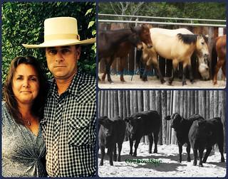 Tom & Traci Davis ~ TnT Ranch