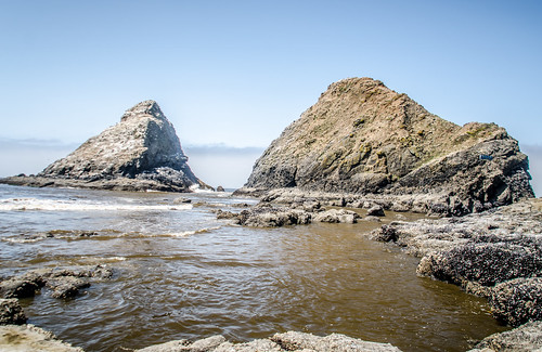 Heceta Head Rocks