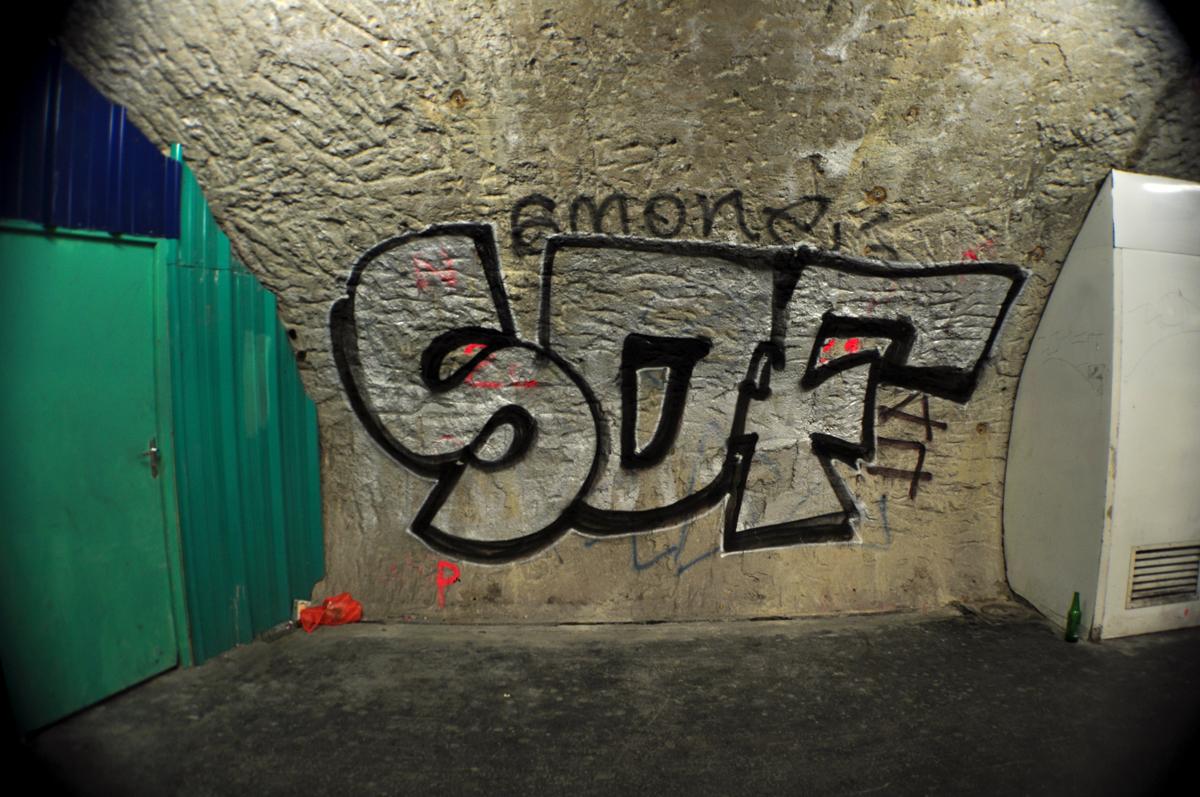 SDF (2)