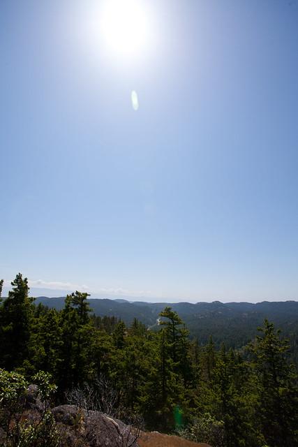 Mt Wells - 2014-06-01-6145