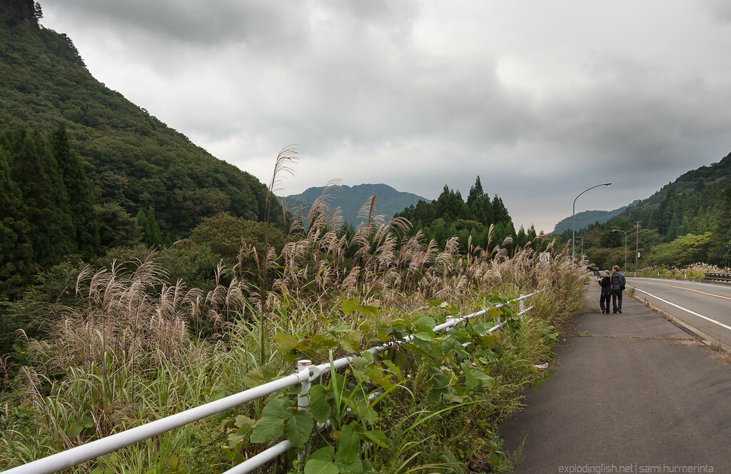 On Sakunami Highway