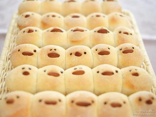 ひよこパン 20170304-DSCT2459-1
