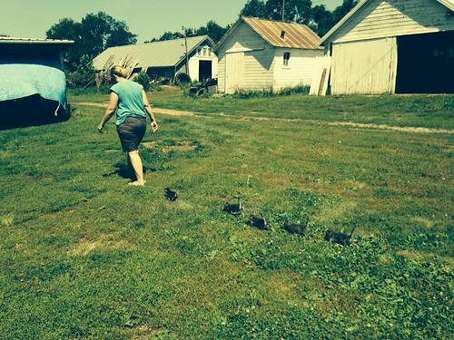 @ grampa's farm