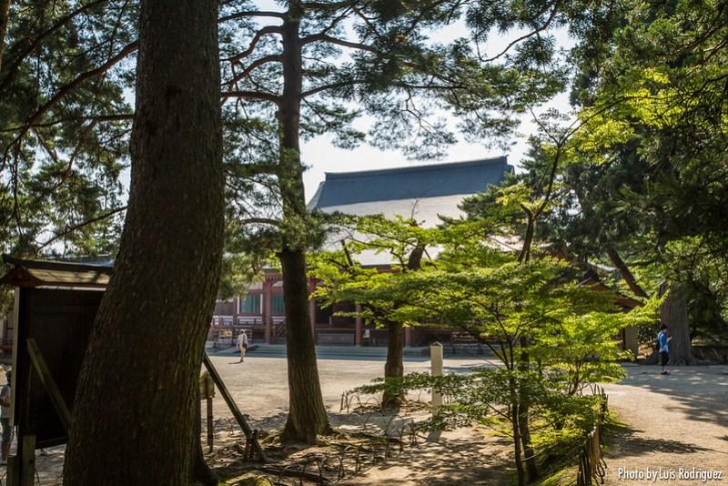Motsu-ji de Hiraizumi-6