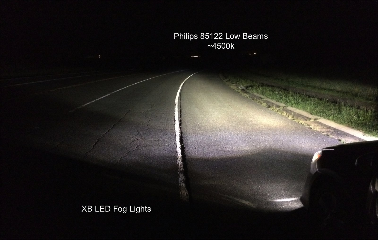 Tundra Fog Light Bulb