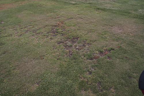 Wolcott Mills Metropark Golf Course-2330