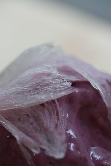かき氷 雪菓 巣鴨