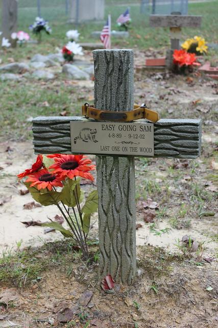 Coon Dog Cemetery, Near Cherokee AL