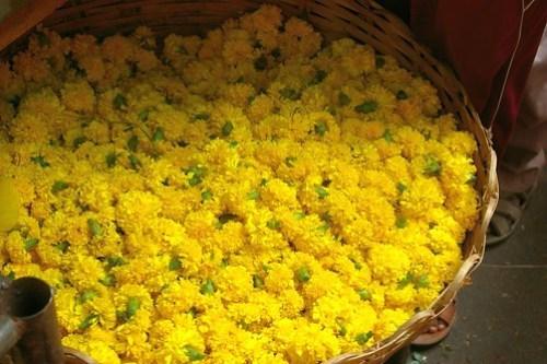 paticheri_pondy flower market (3)