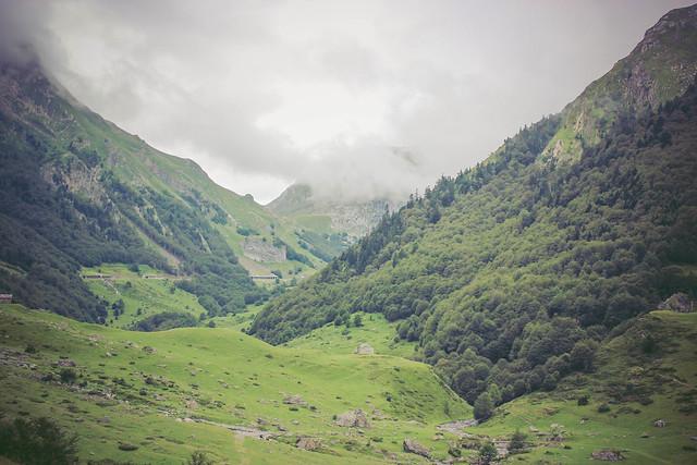 Perfect landscape.