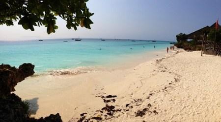 spiaggia @ Babobab Beach Resort Zanzibar