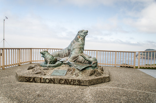 Sea Lion Sculpture