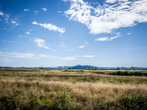 Skagit Valley and Samish Island-18