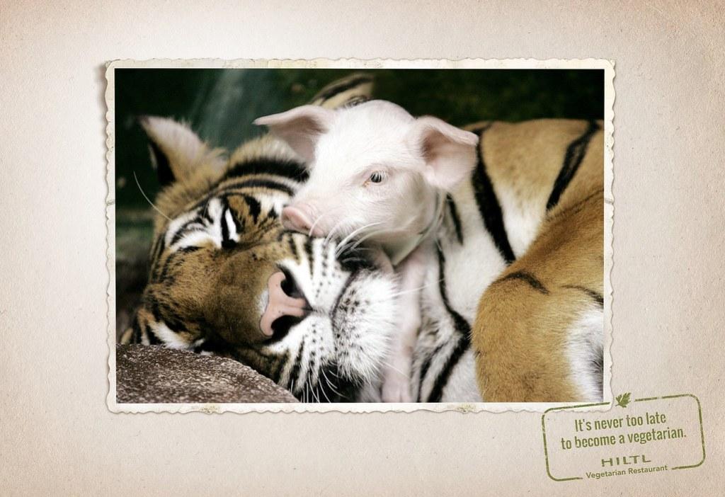 Hiltl Vegetarian Restaurant - Animal friendship 4