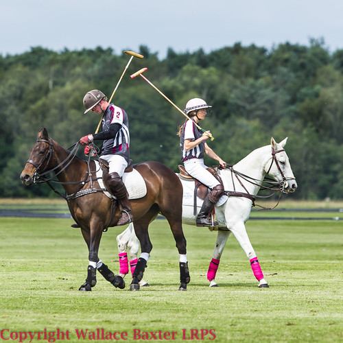 Cheshire Polo 21-6-2014-2