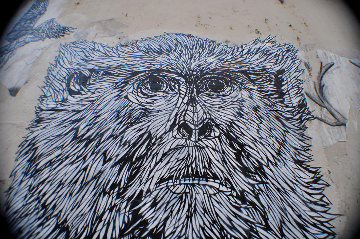 Monkey Bird 3.2
