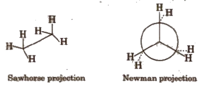 CBSE Class 11 Chemistry Notes : General Organic Chemistry