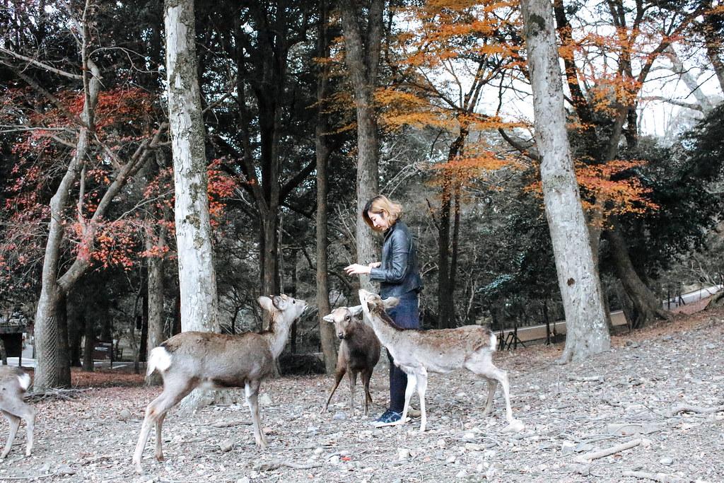 Japan Travel - KissesVera-25