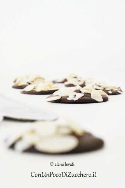 Chocolate & Almond Disks 3