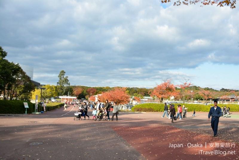 大阪赏枫 万博纪念公园 22