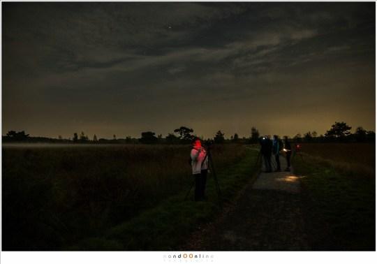 Aan de hemel, tegenover de plek waar de Maan te vinden was, waren er toch enkele sterren goed zichtbaar.