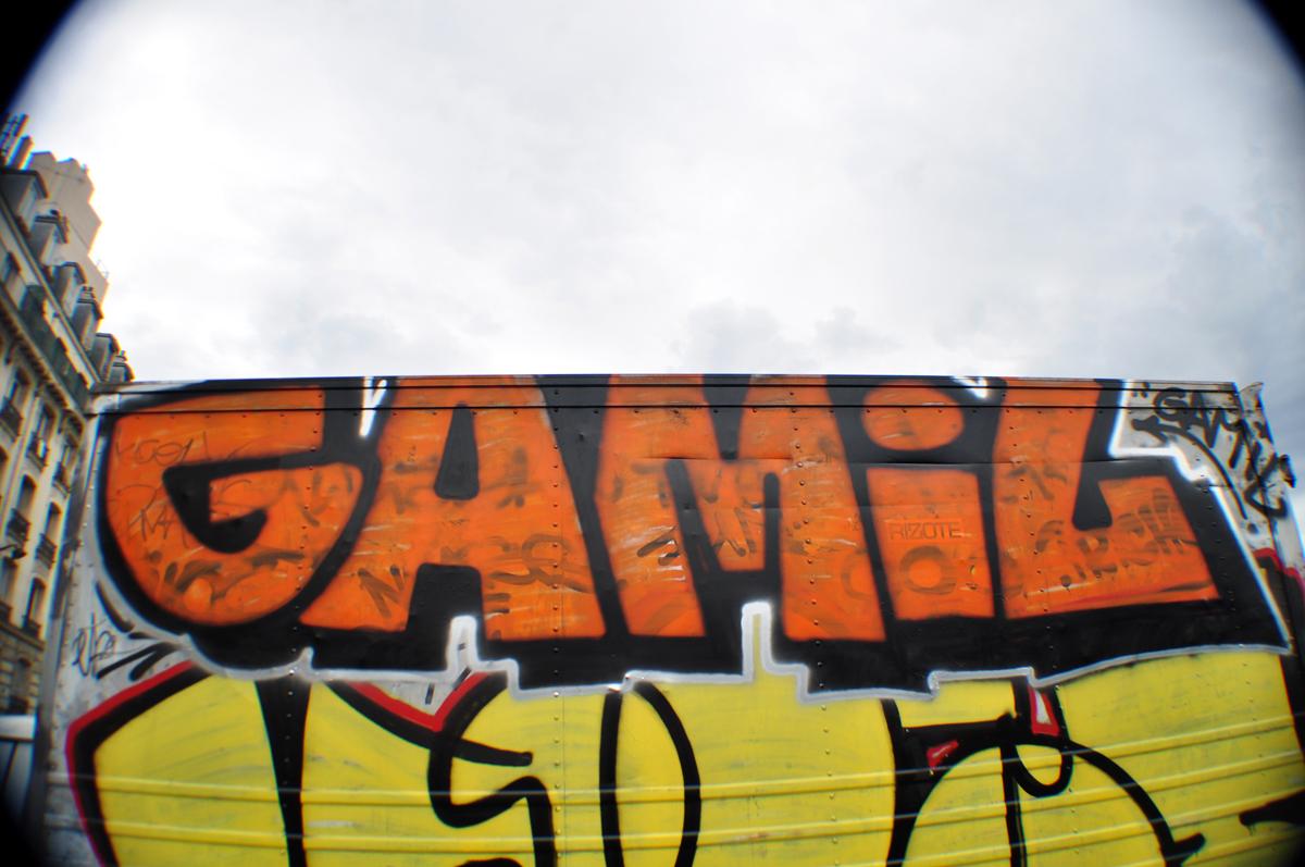 Gamil
