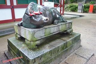 P1060399 Tenmangu (Dazaifu) 12-07-2010 copia