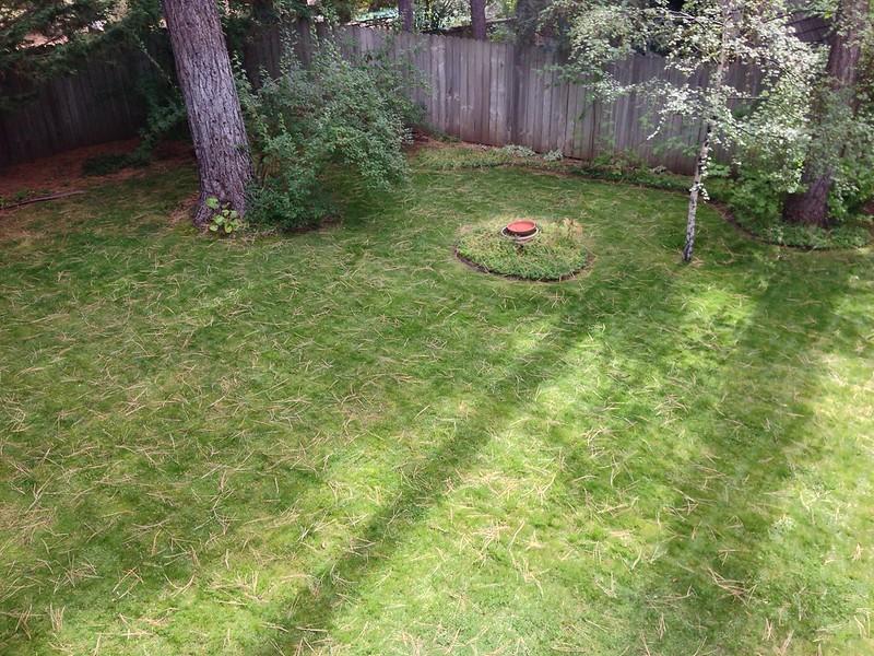 Patty & Steve's Backyard