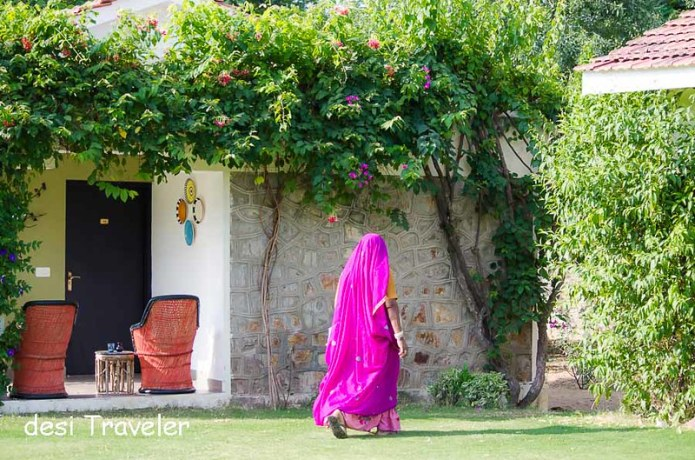 A women in colorful rajasthan dress at Pushkar
