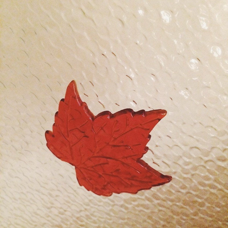 Hanging Fall (10/23/14)