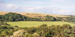 #Purbeck Hills