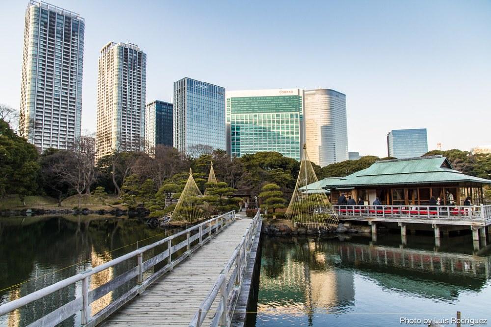 Hama-Rikyu Gardens-81