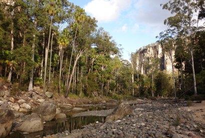 Carnarvon Gorge - Carnarvon Creek