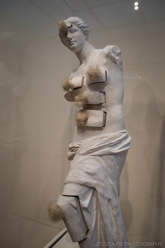 Venus de Milo with Drawers - Salvador Dali in Art Institute of Chicago
