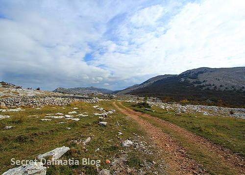 Scenic landscape and dirt roads
