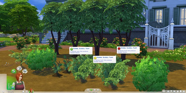 Guide: The Sims 4 Gardening Skill + Plant List (4/6)