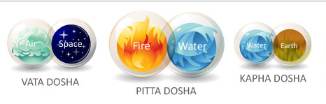 dosha test